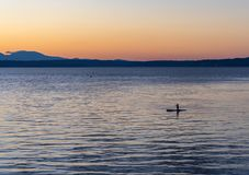 在日落的Paddleboarding在皮吉特湾 免版税库存图片