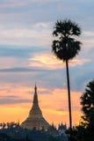 在日落的Shwedagon 免版税库存图片
