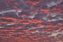 在日落的skyscape 免版税库存照片