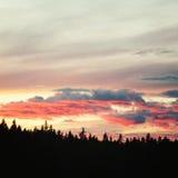 在日落的Valaam 俄国北部的狂放的本质 库存图片