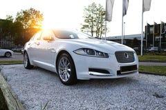 在日落背景的汽车 免版税图库摄影
