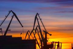 在日落背景的港起重机  免版税图库摄影