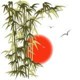 在日落背景的竹子 向量例证