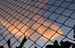在日落背景的链节篱芭 图库摄影