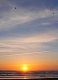 在日落通知的海滩 库存图片