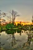 在日落-大沼泽地国家公园的反射 库存照片