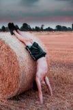 在日落hight对比样式图象的乡下锻炼 免版税库存图片