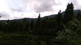 在日间山的自然风景和适用于墙纸 免版税图库摄影