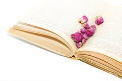 在旧书页传播的干燥玫瑰 免版税库存图片