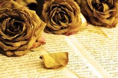 在旧书页的干玫瑰  免版税库存照片