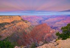 在早日出期间的大峡谷照片 免版税库存照片