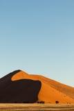 在早晨光的纳米比亚沙漠沙丘焕发红色 免版税库存照片