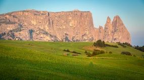 在早晨光, Seiser Alm,南蒂罗尔, Ital的Schlern山 免版税图库摄影
