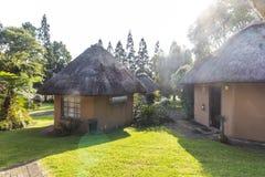 在早晨太阳的典型的rondavels在南非 免版税库存照片