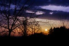 在早晨太阳的背后照明 免版税图库摄影