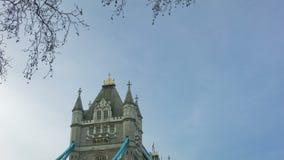 在早晨时间、伦敦、平底锅和掀动的塔桥梁,宽 股票视频