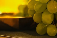 在早晨晴朗的lrays下的大绿色葡萄 免版税图库摄影