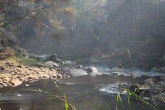 在早晨有雾的薄雾的一条小河 库存照片