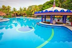 在早晨的热带游泳池 免版税库存照片