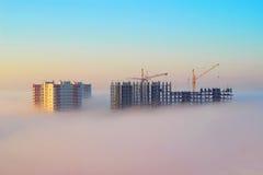 在早晨薄雾的起重机 库存图片