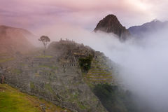 在早晨薄雾的马丘比丘 免版税库存照片
