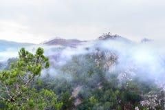 在早晨薄雾盖的小山在一个雨天以后 免版税库存照片