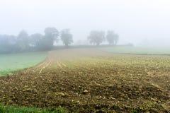 在早晨薄雾-法国的秋天领域 免版税库存图片