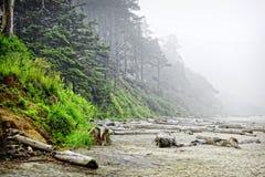 在早晨雾的世外桃源海滩 免版税库存图片
