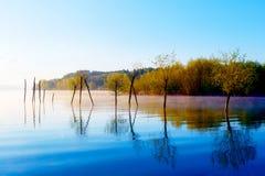 在早晨雾的美好的湖视图与神秘的山和树作为一个痣的残羹剩饭在紫色-蓝色口气 库存照片