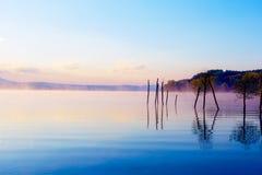 在早晨雾的美好的湖视图与神秘的山和树作为一个痣的残羹剩饭在紫色-蓝色口气 免版税图库摄影