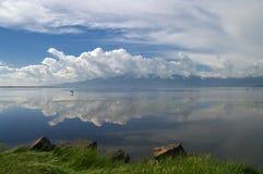 在早期的春天期间的Kerkini湖 库存图片