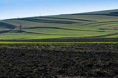 在早期的春天的农业领域风景, 图库摄影