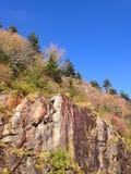 在早期的秋天的岩石峭壁 免版税库存照片