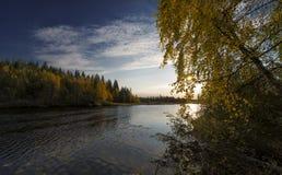 在早黎明的秋天颜色 免版税库存照片