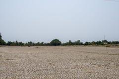 在旱季的高明的土壤,全球性变暖/崩裂了干泥/D 库存图片
