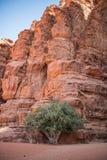 在旱谷兰姆酒,约旦的岩层 免版税库存图片