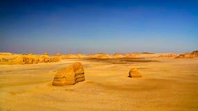 在旱谷AlHitan鲸鱼谷的亦称自然雕塑在埃及 库存照片