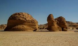 在旱谷AlHitan鲸鱼谷,埃及的亦称自然雕塑 库存图片