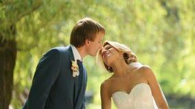 在时髦的布料的美好的婚礼夫妇在晴朗的公园体贴亲吻 股票录像