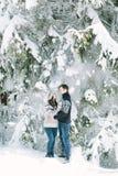 在时髦的被编织的站立在冬天森林爱,winte的圣诞树下的冬天毛线衣和牛仔裤的愉快的爱夫妇 库存图片