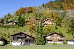 在昂热尔贝格村庄瑞士的环境美化 库存照片