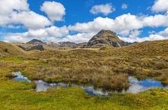 在昆卡省,厄瓜多尔附近的Cajas国立公园 免版税库存图片