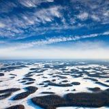 沼泽和树丛在冬天 免版税库存图片