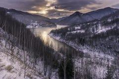 在明亮的毛皮红色星期日之上日落冠上结构树冬天 免版税库存图片
