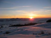 在明亮的毛皮红色星期日之上日落冠上结构树冬天 库存例证