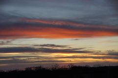 在明亮的毛皮红色星期日之上日落冠上结构树冬天 库存图片