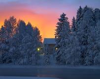 在明亮的毛皮红色星期日之上日落冠上结构树冬天 图库摄影