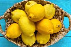 在明亮的深蓝背景的柠檬 库存照片