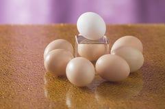 在明亮的背景的一些个鸡蛋 库存照片