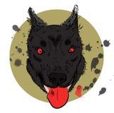 在明亮的背景的动画片恼怒的狼人面孔 库存图片
